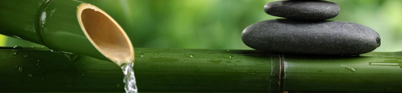 Saúde e Zen
