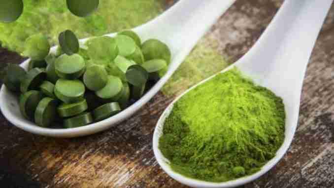 Espirulina - Um dos alimentos mais perfeitos da natureza