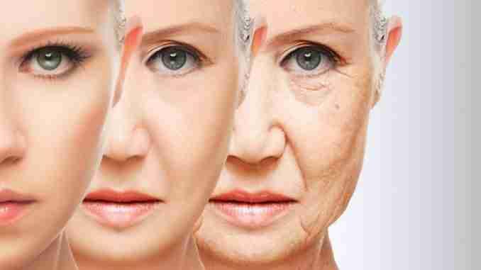 colageno-e-envelhecimento